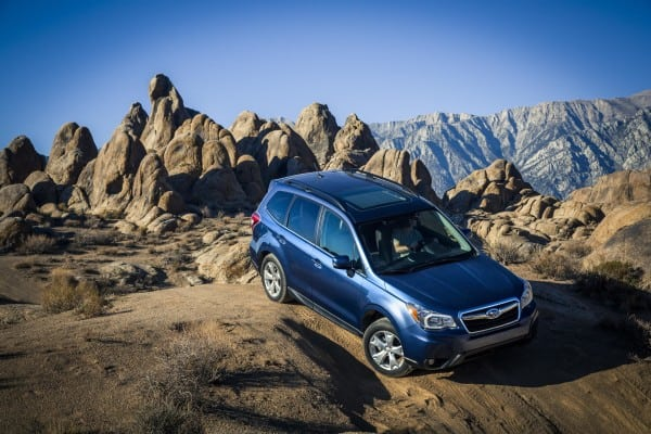 Forester_050