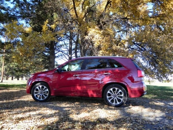 2014 Kia Sorento - under tree leftside 3 AOA800px
