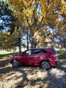 2014 Kia Sorento - under tree leftside tall AOA800px