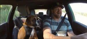 video-vaughn-gittin-jr-smashes-ford-fiesta-dog4-640x288