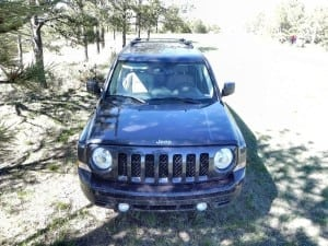 2015 Jeep Patriot - trees 8 - AOA1200px