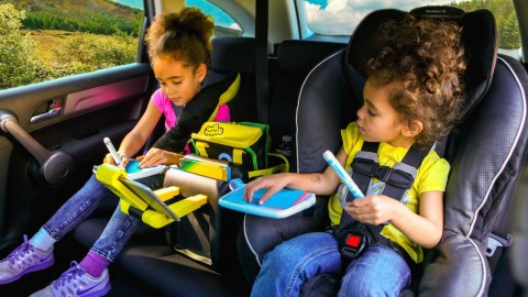 BubbleBum Junkie in-Car Organizer is Awesome