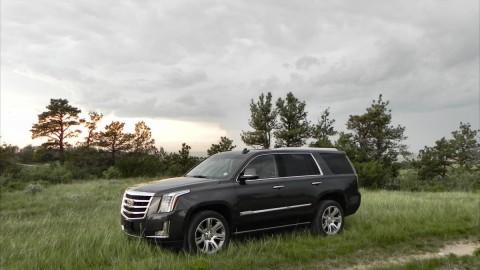 2015 Cadillac Escalade is Big, Posh Goodness