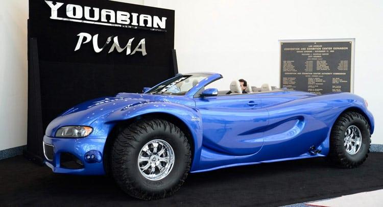 Youabian-Puma-0