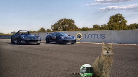 Lotus Offering 'Pet Lids' To Protect Our Furry Friends